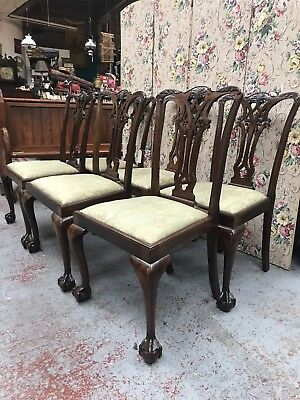 Set of 6 Mahogany Chippendale Style Dining Chairs Fantastic Condition