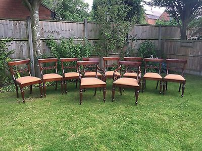 10 Stunning English Regency Flower Bar Mahogany Dining Chairs (inc.2 Carvers)