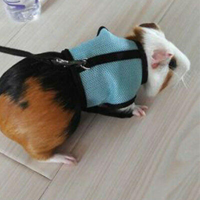 Durable Harness Leash Strap Lead Traction Rope For Hamster Rabbit Guinea Pig AU