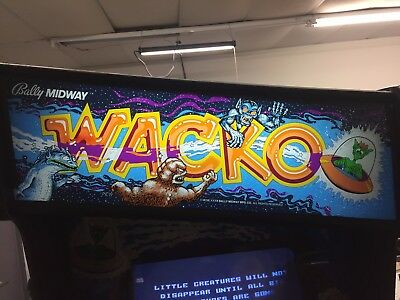 Rare classic Bally Midway WACKO arcade game, fully restored 100%