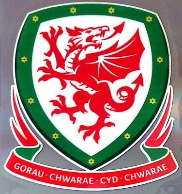WALES Football Team Iron On Crest Souvenir Soccer Badge Patch