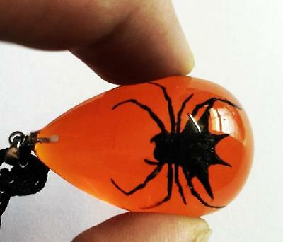 cool insect jewelry  black spider  drop pendants fashion jewelry bw81