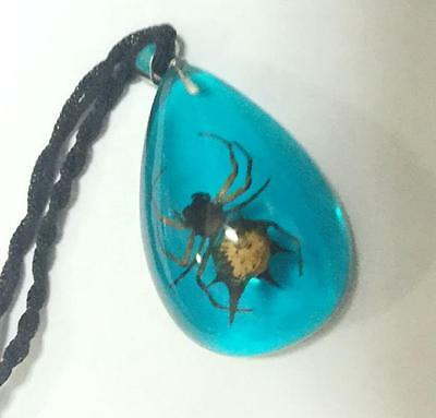 spider jewelry insect jewelry angle spider blue  drop  pendants