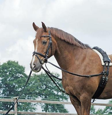 Triangle Reins, Wiener Lunging, Side Basic, Pony, Thoroughbred / WB