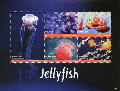 Antigua & Barbuda 2017 MNH Jellyfish 5v M/S I Marine Animals Stamps