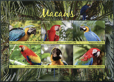 Antigua & Barbuda 2017 MNH Macaws Scarlet Macaw 6v M/S II Parrots Birds Stamps