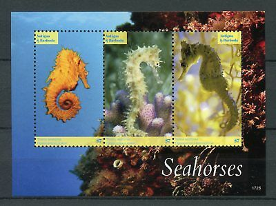 Antigua & Barbuda 2017 MNH Seahorses 3v M/S Marine Animals Corals Stamps