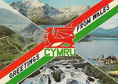 Postcard - Wales - Greetings from Wales