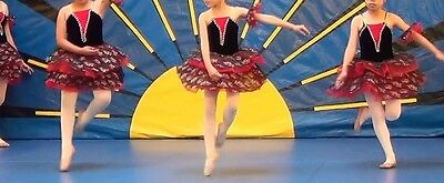 Lot of 6 available. Ballet recital dance costume for girls / women