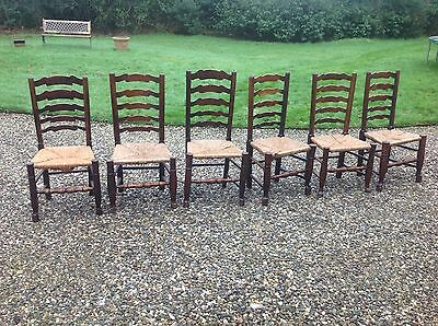 Set Of 6 Antique Padfoot Ladderback Kitchen Dining Chairs Solid Oak & Elm Rush