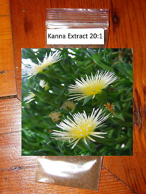 Kanna Extract 20:1 (Sceletium tortuosum) 2 grams *High Quality**