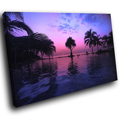 SC709 purple seaside palm trees Scenic Wall Art Picture Large Canvas Print