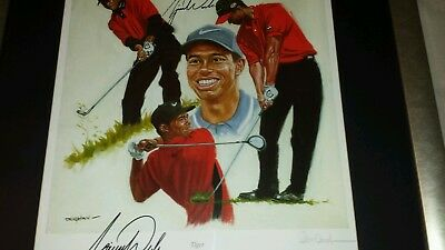 """""""tiger"""" Ltd Edition Hand Signed Tiger Woods Print By Peter Deighan"""
