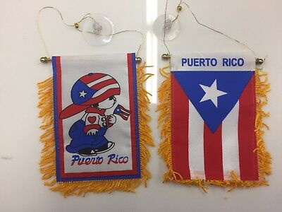 Puerto Rico 4x6 Mini Banner  Boy and PR Flag each Side with Suction Cup