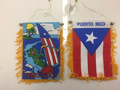 Puerto Rico 4x6 Mini Banner Coqui Surfing and PR Flag each Side with Suction Cup