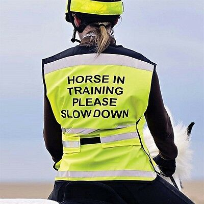 """Equisafety Air """"Horse in Training"""" High Viaibility Safety Waistcoat. Yellow/Pink"""