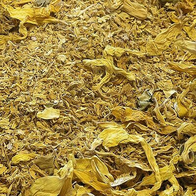 SUNFLOWER BLOSSOM Helianthus annuus DRIED HERB, Bulk Natural Tea 850g
