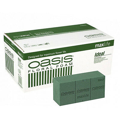 Oasis Wet Brick Floral Foam - Premium quality - Pack 1, 2, 4, 8, 10 & 20