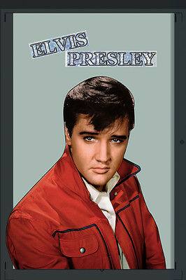 Elvis Presley The King Nostalgia Bar Mirror Mirror Bar Mirror 8 11/16X12 5/8in