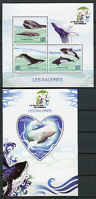 Madagascar 2017 MNH Whales 3v M/S 1v S/S Baleines Whale Marine Animals Stamps