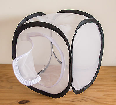 Insect mesh cube - Pop up cage/enclosure (30x30x30cm)