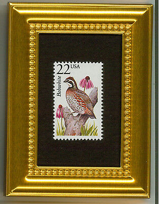Bobwhite - A Collectible Glass Framed Postage Micro Masterpiece!