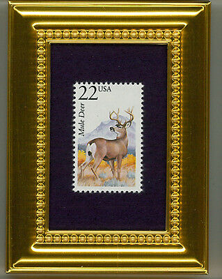 Mule Deer - A Collectible Glass Framed Postage Masterpiece!