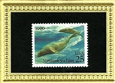 The Sea Lion - A 25 Y.o. Stamp Glass Framed Collectible Postage Masterpiece!