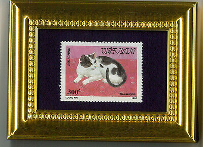 Black & White Short Haired Cat  A Glass Framed Postage Masterpiece