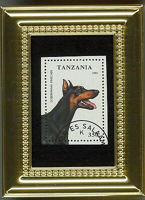 Brilliant Doberman Pinscher  - A Glass Framed Collectible Postage Masterpiece!