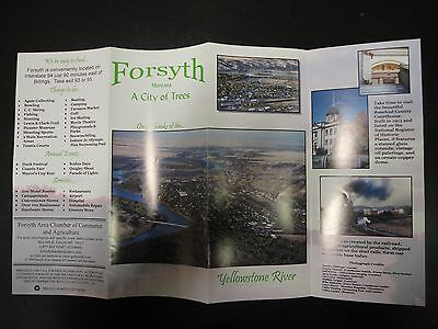 Forsyth Guide from 2000