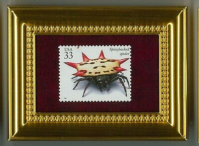Spinybacked Spider - A Glass Framed Collectible Postage Masterpiece