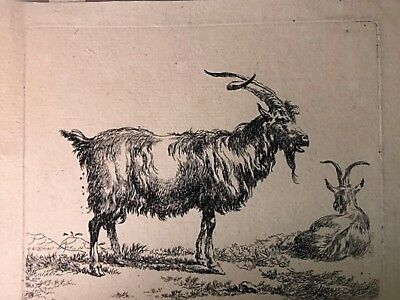 "Nicolaes Berchem."" Ziegen"" 1635/83.Acquaforte.ANIMALIA Holland"