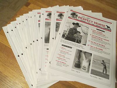 John Lyons The Perfect Horse Periodical Booklets lot Back Issues