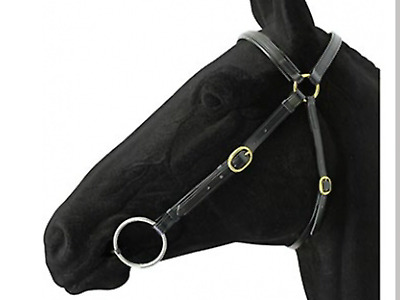 Bridle Barcoo Full PVC Horse