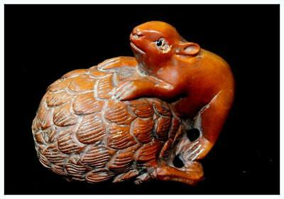 "NW21 Japanese Antique wooden "" Squirrel and tree fruit  Netsuke signed"