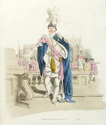 RITTER VOM HOSENBANDORDEN / KNIGHT OF THE GARTER - Pyne - kol. Aquatinta 1805