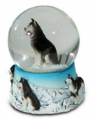 Red Husky Dog Photo Snow Globe Waterball Stocking Filler Gift AD-H68GL