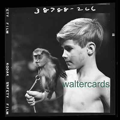 "2 1/4 "" B&W Negative 1958 Dennis Kohler with monkey SWISS FAMILY ROBINSON chain"