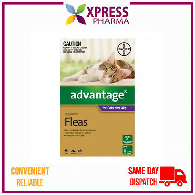 Advantage Fleas Treatment for Cats Over 4 kgs Wormer NEW STOCK XPRESS