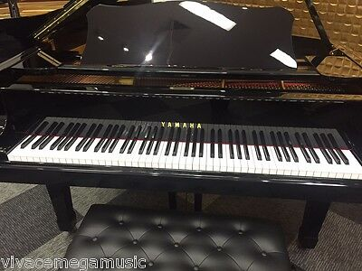 Yamaha C3 Professional Grand Piano Over 80 Pianos in Vivace Music Showroom