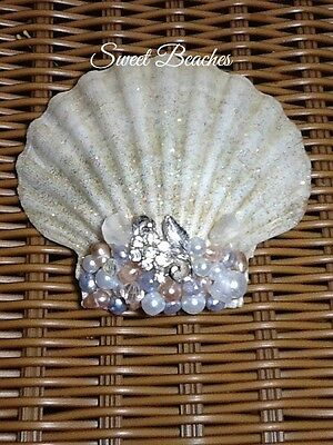 Shimmering Jeweled Seashell by Sweet Beaches