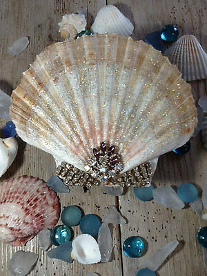 Jeweled Seashell with amethyst colored jewel