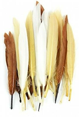 Touch of Nature 24-Piece Mini Indian Feathers for Crafting, 3-Inch, Earth Mix