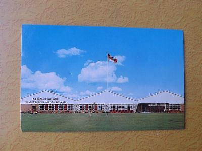 Postcard Ontario Flue Cured Tobacco Growers Auction Exchange Building