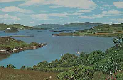 Old Postcard:Mulroy Bay, Co. Donegal, Ireland.