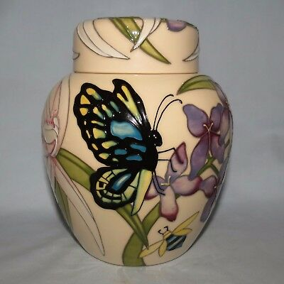 Moorcroft Australian Exclusive LtdEd Cairns Butterfly Ginger Jar BOX BEST SIGNED