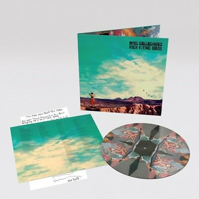Noel Gallagher High Flying Birds Who Built The Moon Picture Disc Vinyl Limited