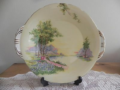 """Aynsley """"Bluebell Time"""" Yellow Background Cake Plate C493/7"""