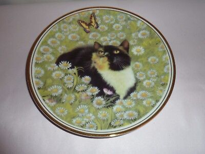 Royal Vale Ornamental Porcelain Cat & Butterfly Plate Made In England